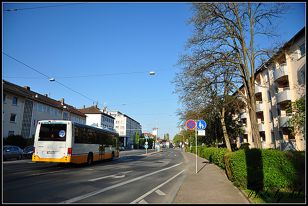 DSC_3111.jpg