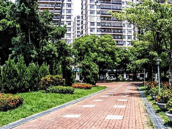 2016032902林蔭步道.jpg