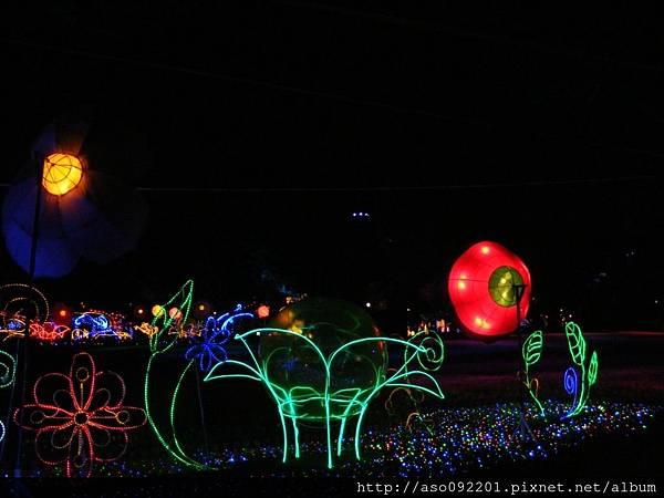 3122LED燈圍成的花卉造景
