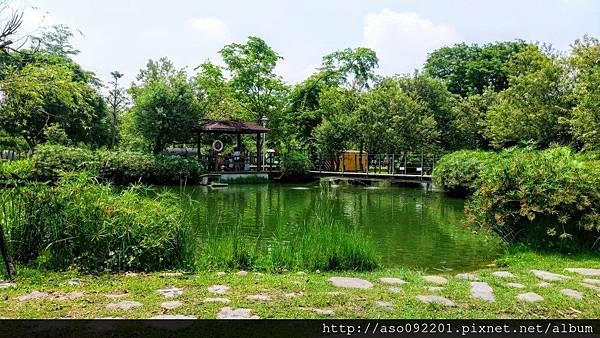 2016121807生態池