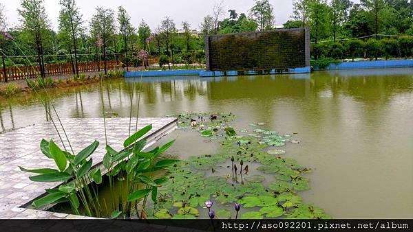 2016122021教堂後頭的池塘