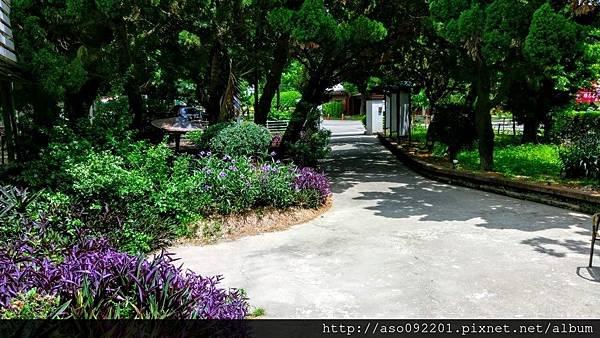 2017022506餐廳庭園