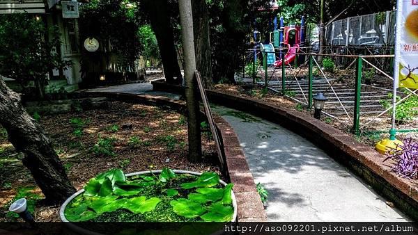 2017022507餐廳庭園旁的步道