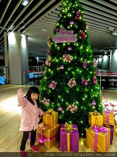 2017070606用餐區的聖誕樹