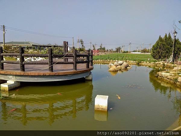 2017070504觀景台與生態池