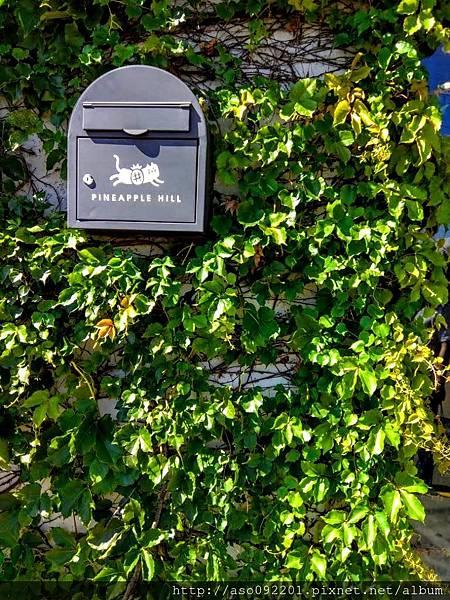 2018022003鳳梨後面的郵箱