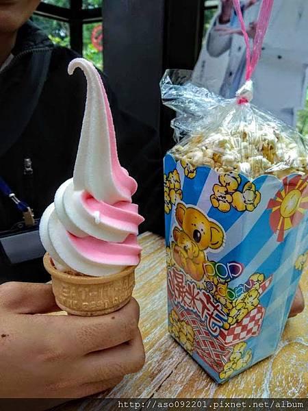 2018121728綜合口味的冰淇淋.jpg