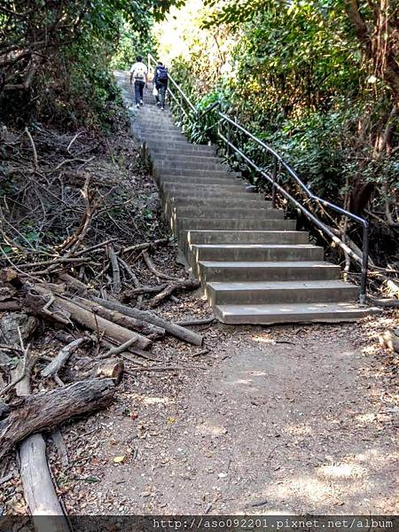 2018122004步道旁的階梯