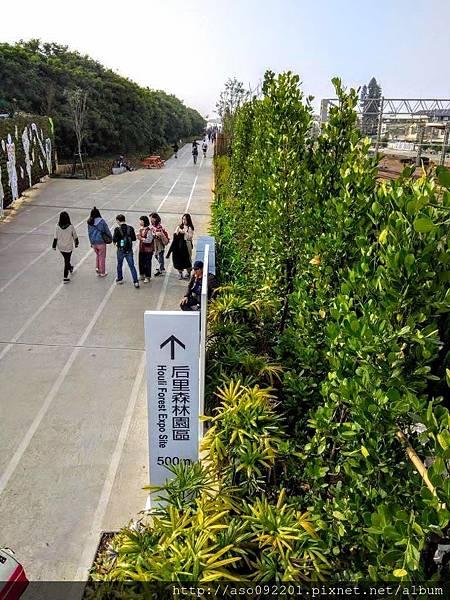 2019010502往后里園區的步道.jpg