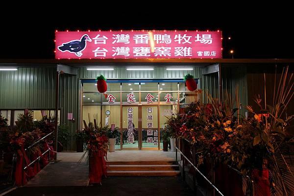 台灣番鴨牧場16