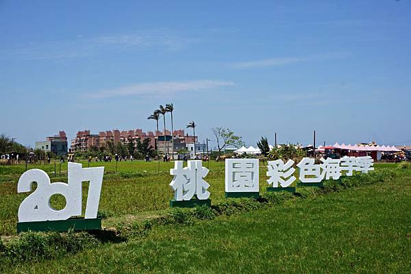 桃園彩色海芋季9