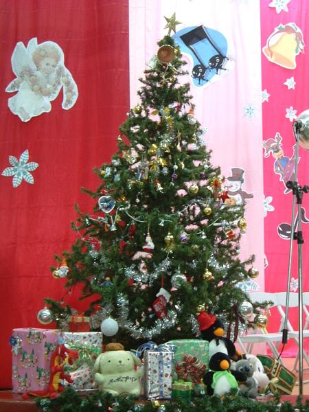 另一顆聖誕樹唷!