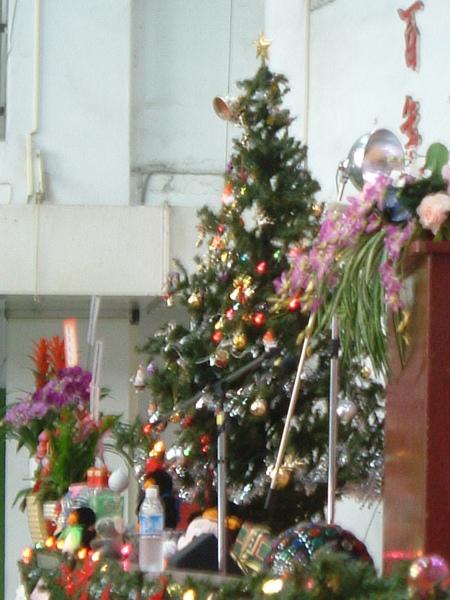 真的很美的聖誕樹!我也想要有一顆!