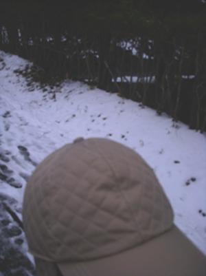 我與雪1.jpg