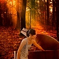 __web-09-昏prt-fnl-sunset woods2-1330703_75322217