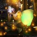 ___net-a-_0169-b.jpg