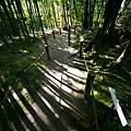 web-1-庭-天授庵_1535.jpg