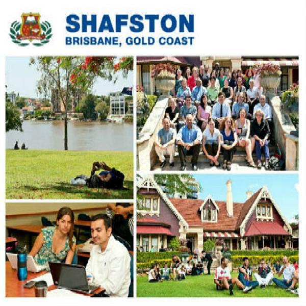 03-shafston-3.jpg