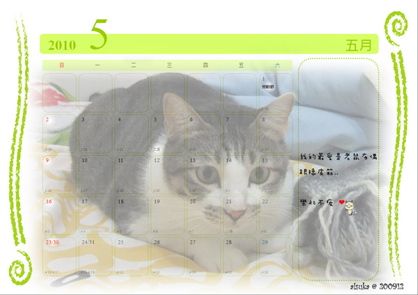 CAT-05.jpg