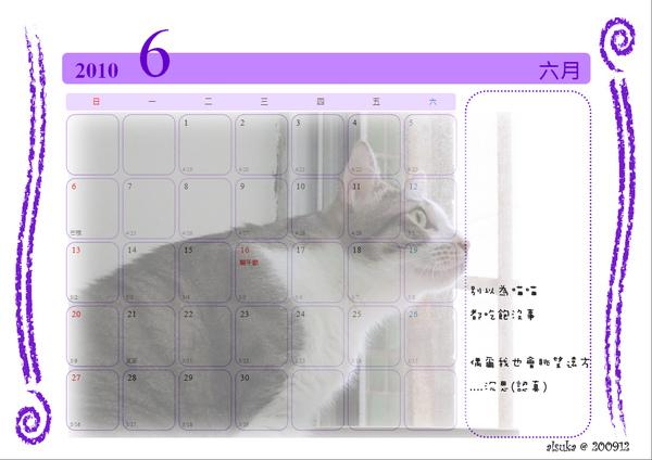 CAT-06.jpg