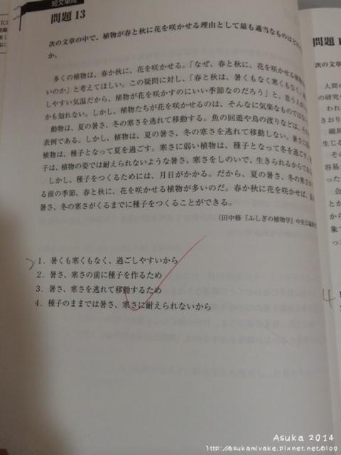 写真 2 (8).JPG