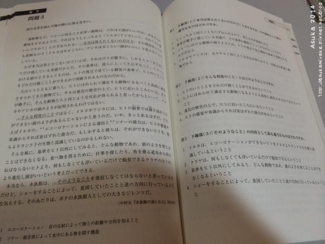 写真 3 (6).JPG