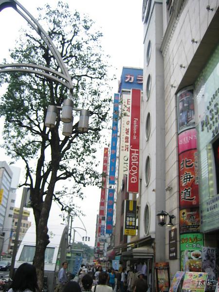 japan0607 331-1.jpg