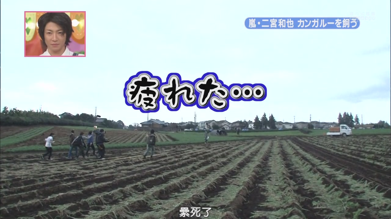 [[HDTV] 110122 天才!志村どうぶつ園(二宮和也)[18-29-49].JPG