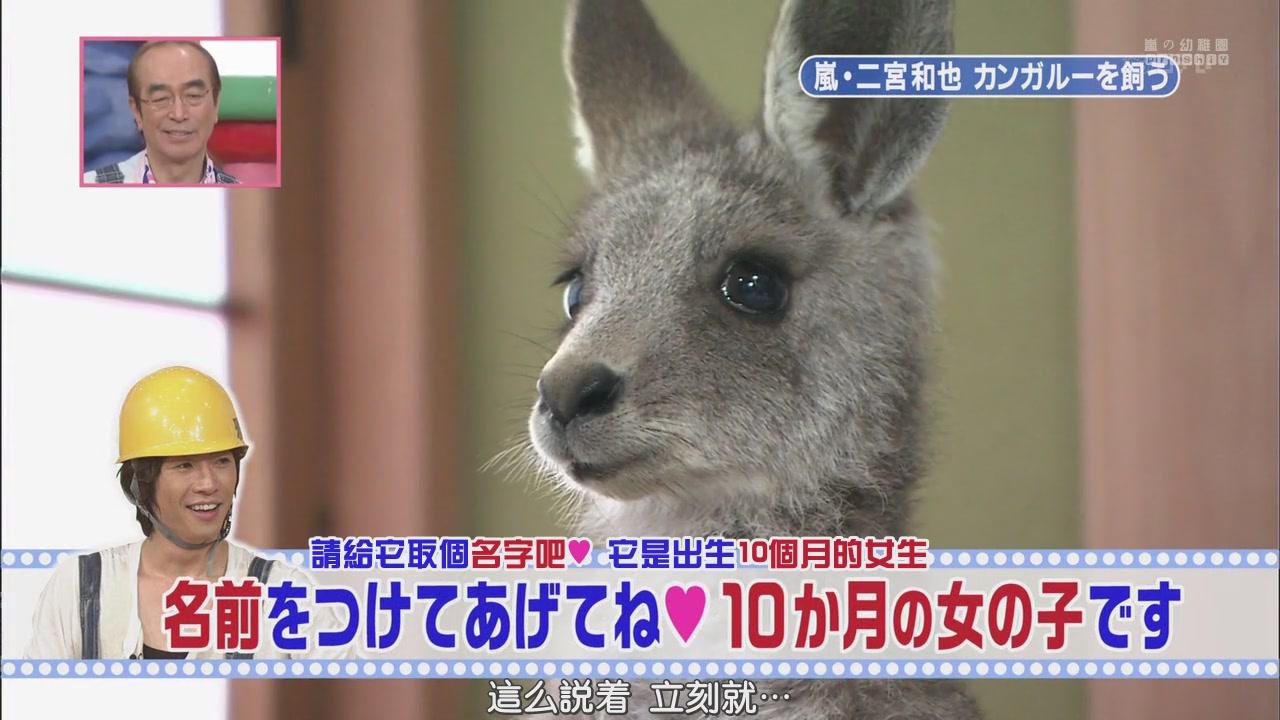 [[HDTV] 110122 天才!志村どうぶつ園(二宮和也)[18-26-23].JPG