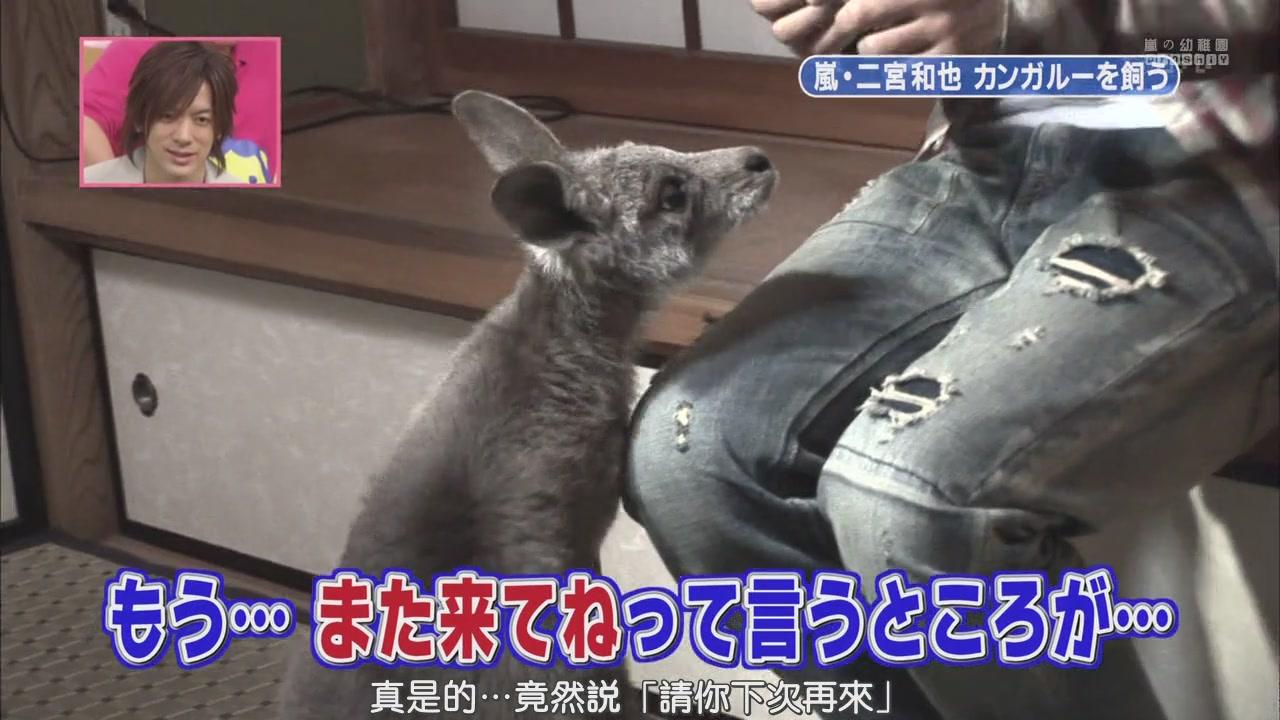 [[HDTV] 110122 天才!志村どうぶつ園(二宮和也)[18-30-14].JPG