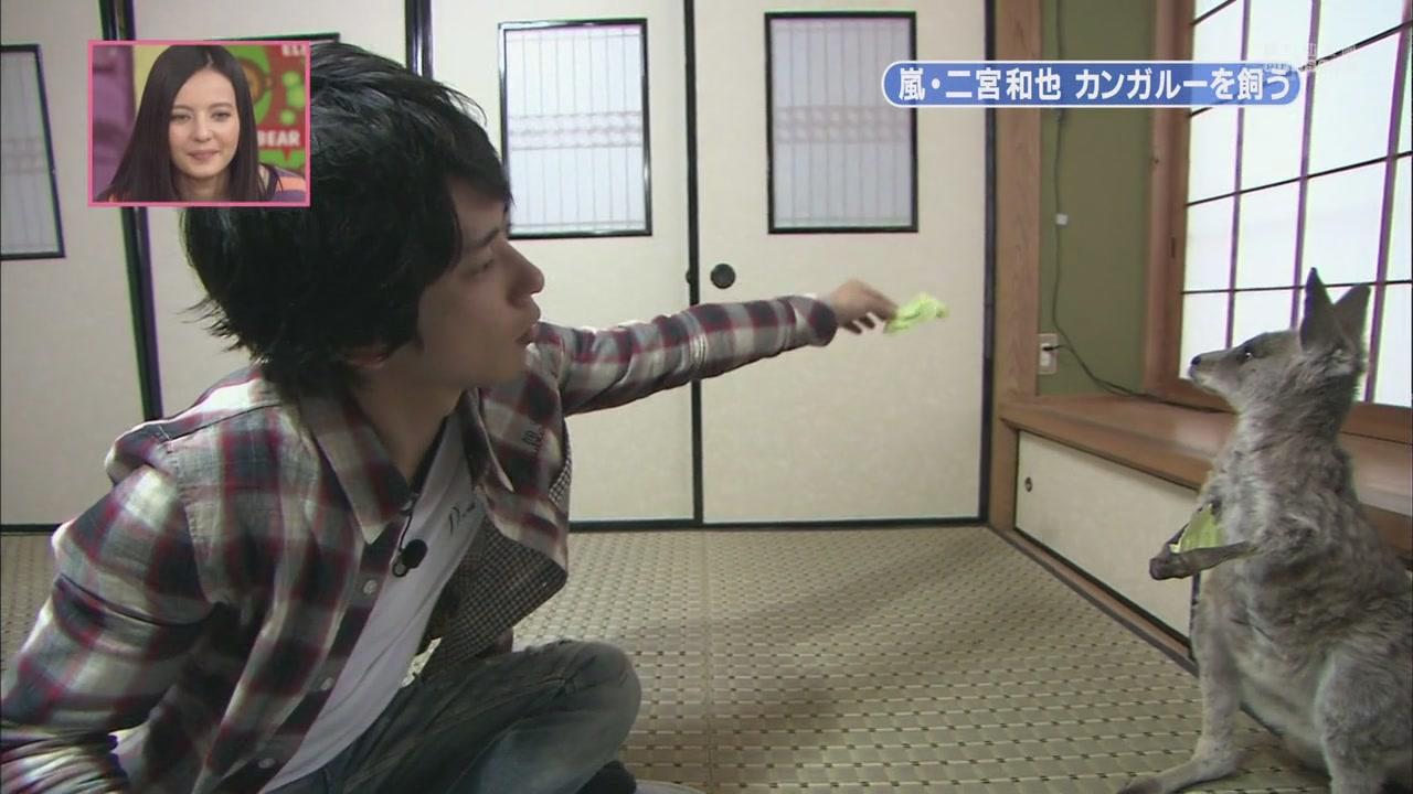 [[HDTV] 110122 天才!志村どうぶつ園(二宮和也)[18-28-34].JPG