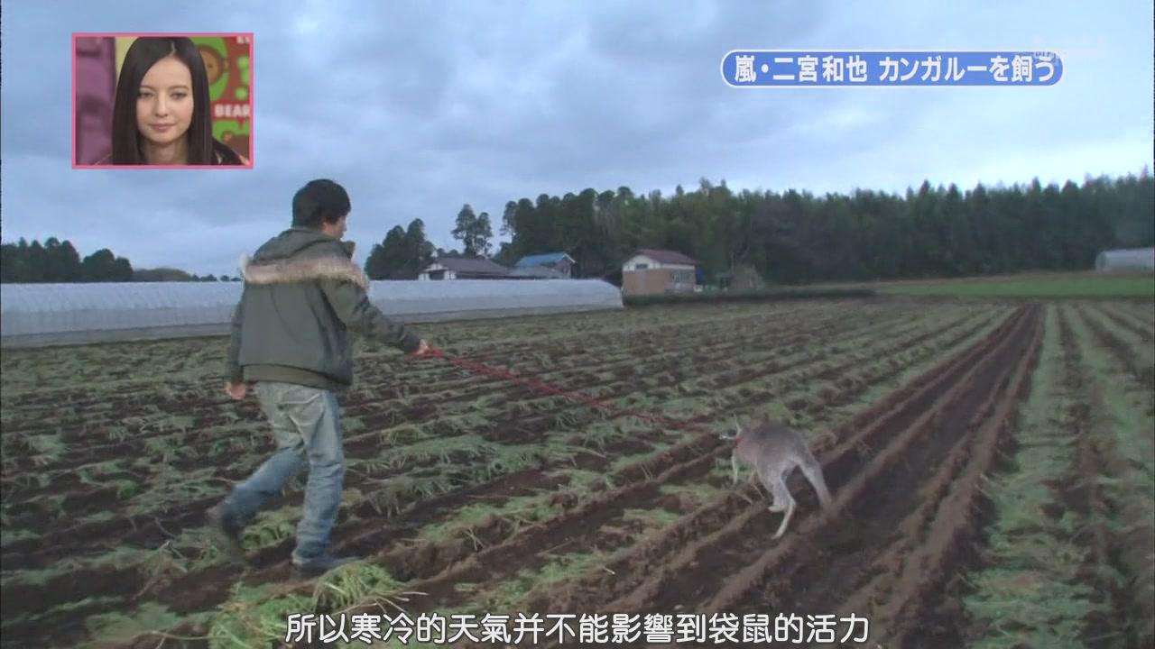 [[HDTV] 110122 天才!志村どうぶつ園(二宮和也)[18-29-37].JPG