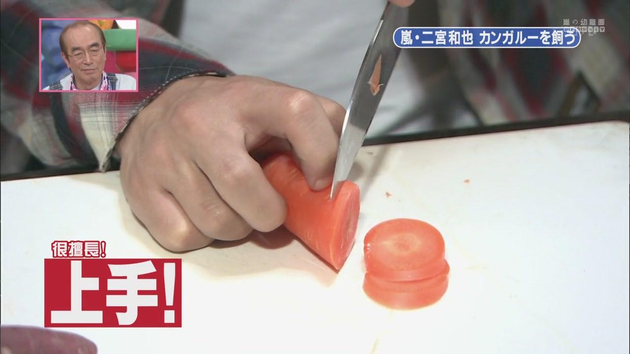[[HDTV] 110122 天才!志村どうぶつ園(二宮和也)[18-27-44].JPG
