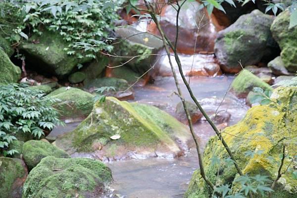 絹絲瀑布下的紅褐色岩石1.JPG