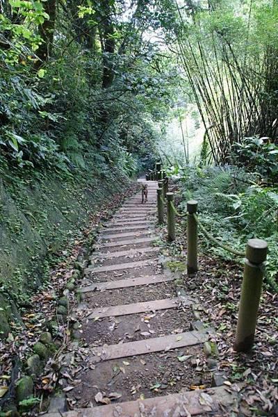 水濂橋步道3.JPG