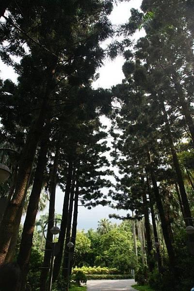 台北植物園4.JPG