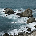 濱海步道的奇岩怪石1