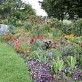 植物園1107-1