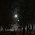 月夜 20080916