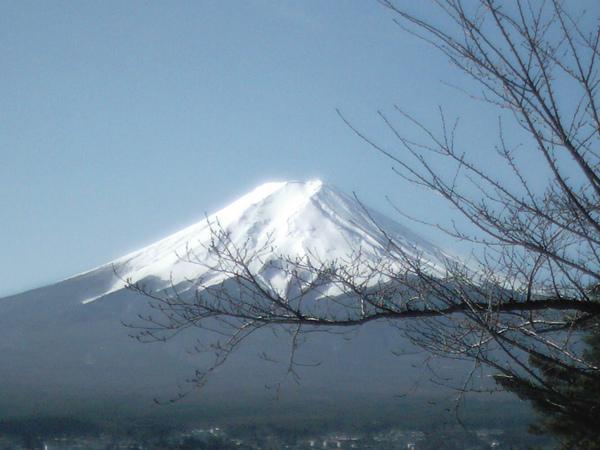 美麗的富士山