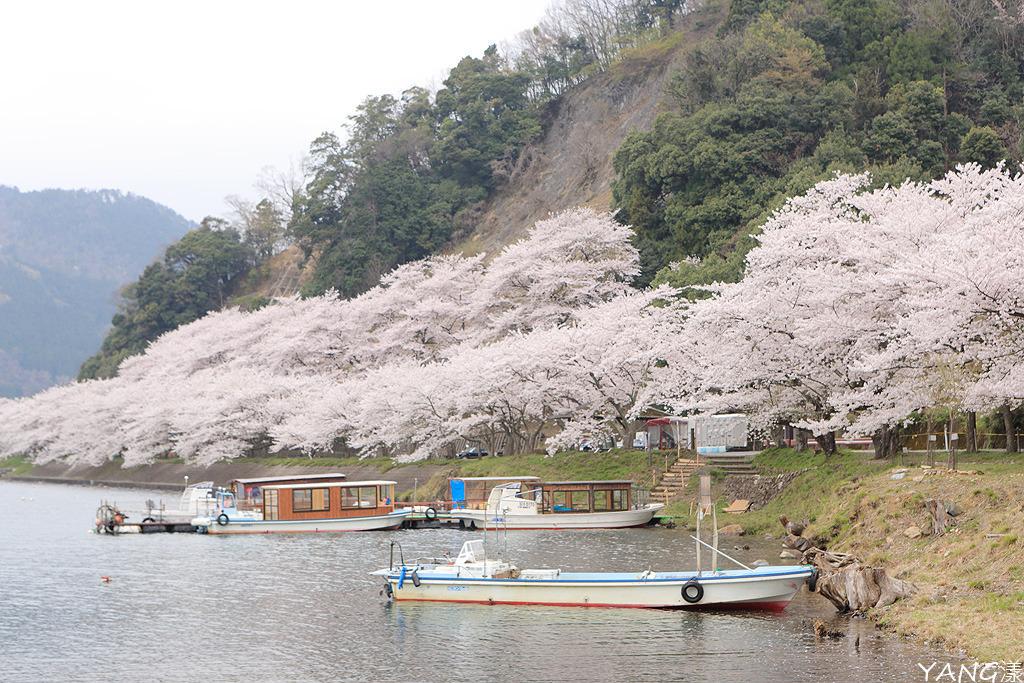 琵琶湖 競艇 予想