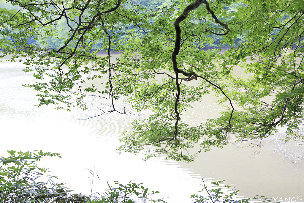 白神十二湖