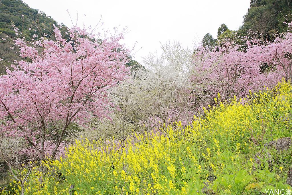 拉拉山秘密花園