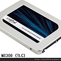 CTXXXMX300SSD1_02.png