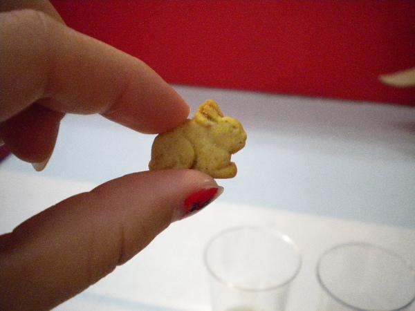 還有小兔子餅乾