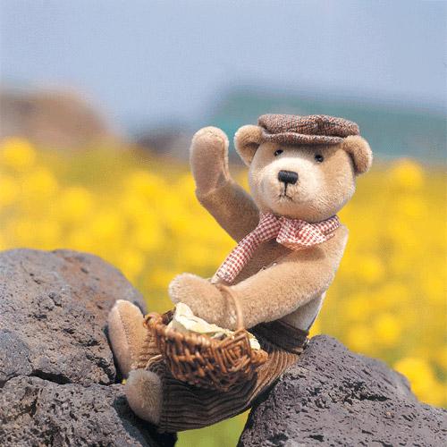 泰迪熊05