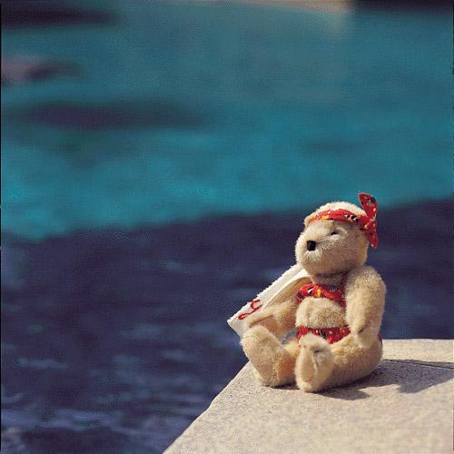 泰迪熊01