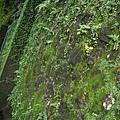 人字牆內藏水管