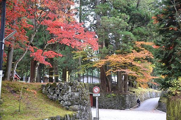 日本日光箱根 167.jpg