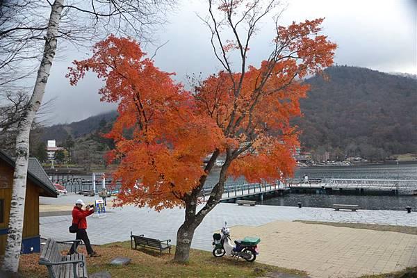 日本日光箱根 250.jpg